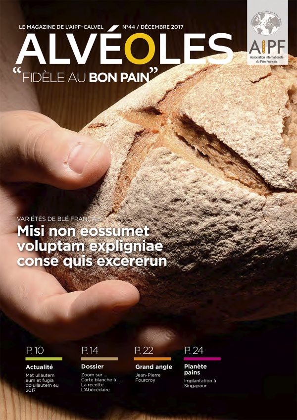 Conception graphique – Magazine de l'AIPF